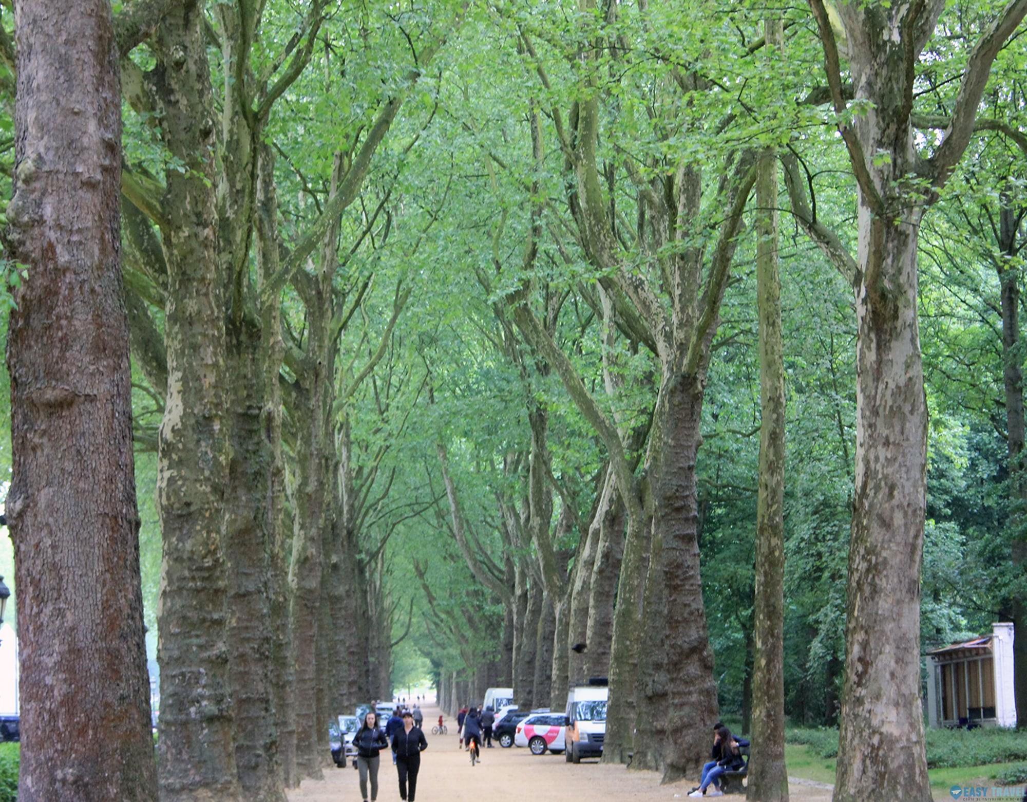 Парк Елизабет в Брюксел